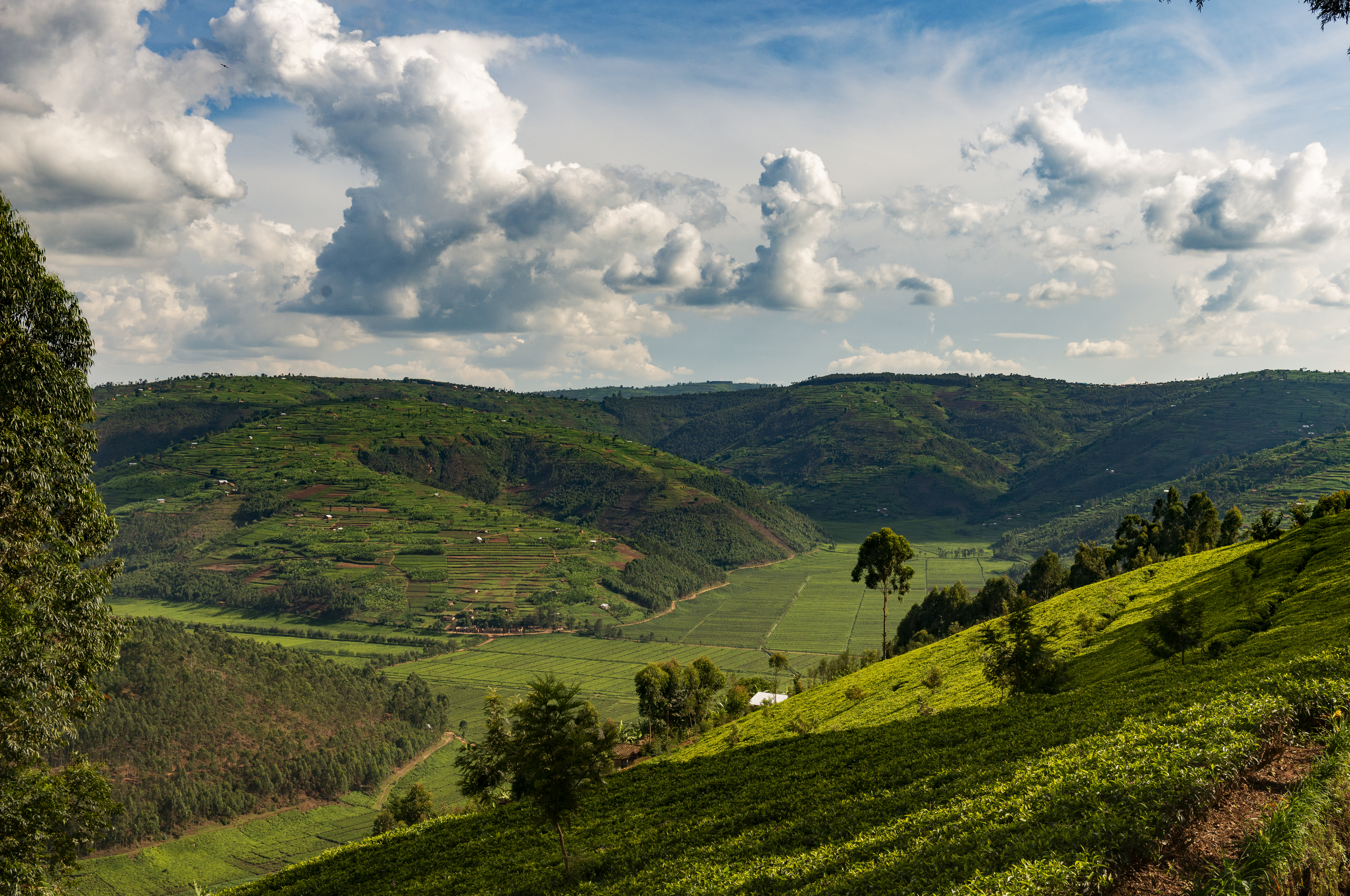 Kigali111519_108129