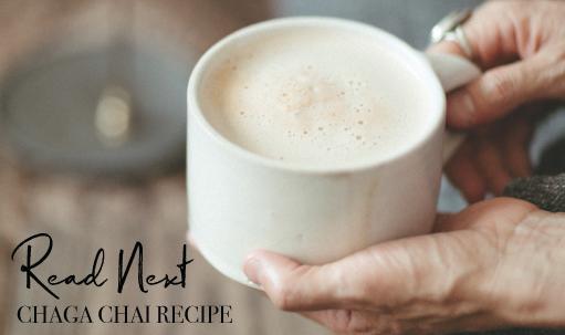 Read-Next-chaga-chai-recipe