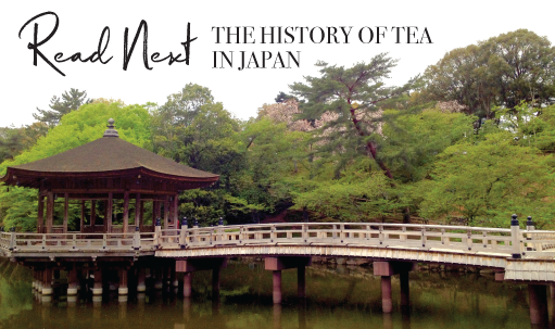 Read-next-history-of-tea-in-Japan