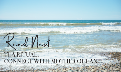 Read Next: Tea Ritual: Connect With Mother Ocean